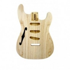 Corps type Stratocaster