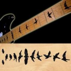 Sticker guitare touche oiseaux noir pearl