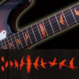 Sticker guitare touche oiseaux sunburst