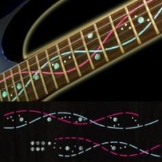Sticker guitare signature lignes Ibanez® Steve Vai