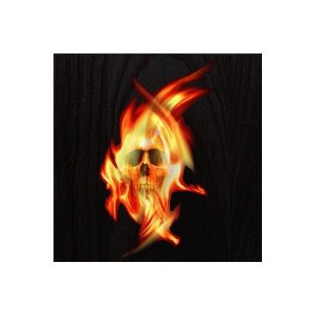 Sticker guitare flammes tête de mort