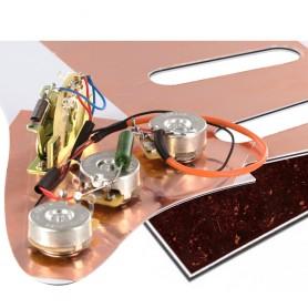 Plaque électronique guitare optimisée tortoise marron Stratocaster US