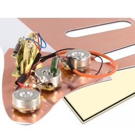 Plaque électronique guitare optimisée vieux crème Stratocaster US
