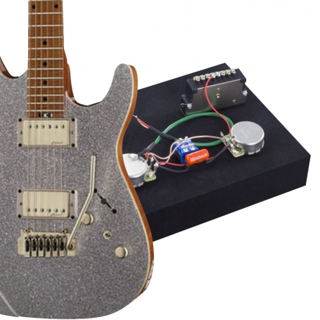 Kit électronique guitare optimisé Harley Benton Fusion HH