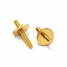 Lot 2 inserts chevalet vintage type LesPaul® US doré